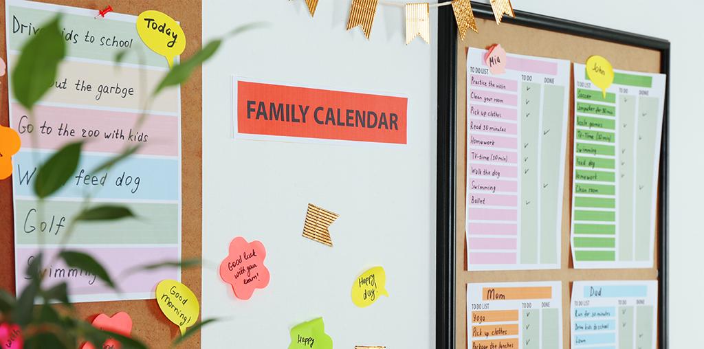 Organized family calendar on wall